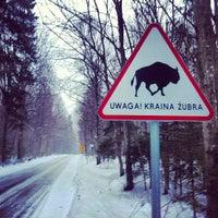 Photo taken at Zwierzyniec by Jaroslaw M. on 3/11/2013
