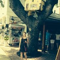 Photo taken at Tree Bar by Kristin on 4/11/2014