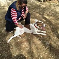 Photo taken at Πάρκο για σκυλιά by vasilis z. on 10/26/2014