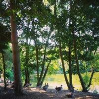 Снимок сделан в Center Parcs пользователем Ben B. 8/14/2013