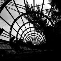 Foto tomada en Ferrocarril de Cuernavaca por Héctor L. el 7/21/2017