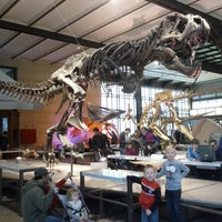 Photo taken at Museum of Natural Sciences by Evi P. on 10/30/2012