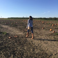 Photo taken at Honey Hill Orchard by Shane on 10/22/2016