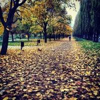 Снимок сделан в Русановская набережная пользователем Slava B. 10/25/2012