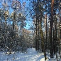 Photo taken at Olszynka Kanałek w lesie by Maja D. on 1/16/2016