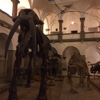Photo taken at Paläontologisches Museum by Anna S. on 10/23/2014