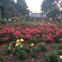 Japanischer Garten München japanischer garten sendling westpark münchen bayern