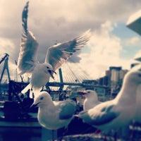Photo taken at Sydney Fish Market by Ozan T. on 3/3/2013