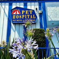 Photo taken at Signal Hill Pet Hospital by Tony C. on 5/17/2013