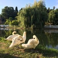 Photo taken at Дендропарк «Южные культуры» by Наталья С. on 7/22/2016