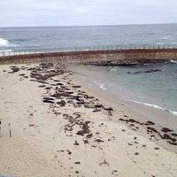 Foto tirada no(a) Seal Rocks por Deb M. em 6/7/2013