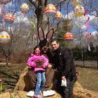 3/30/2013にDonficoがQueens Zoo Aviaryで撮った写真