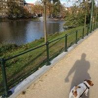 11/9/2014 tarihinde Ebba S.ziyaretçi tarafından Étangs d'Ixelles / Vijvers van Elsene'de çekilen fotoğraf