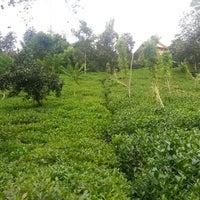 Photo taken at çay bahçesi 🌱🌱 by Enes B. on 8/23/2014