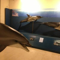 Photo taken at Museu do Mar Rei D. Carlos by António L. on 6/1/2013