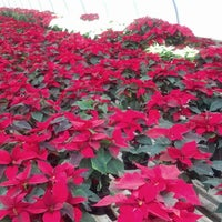 Photo taken at Exotic Flowers by Rick C. on 12/2/2012