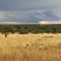 Photo taken at Mbuzi Mawe Tented Camp by Cullen P. on 3/27/2013