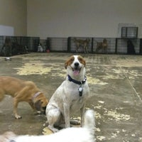 Photo taken at Happy Tails Doggy Daycare by Cullen P. on 8/9/2013
