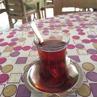 Photo taken at Kamelya Çay Bahcesi by samet k. on 3/18/2018