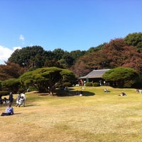 Photo taken at Shinjuku Gyoen by Amo W. on 11/20/2012