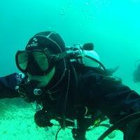 Foto tomada en Subfari Diving Center por Curro C. el 4/6/2014