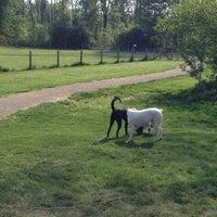 Photo taken at Lyon Oaks Bark Park by Toshi ⚾. on 5/19/2013