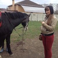 "Photo taken at Конный клуб ""Horse travel"" by Светлана С. on 4/12/2014"