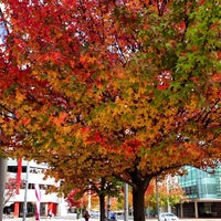Photo taken at Jolimont Tourist Centre by jing s. on 5/1/2014