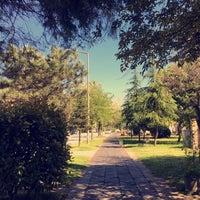 4/22/2016 tarihinde Ayşe K.ziyaretçi tarafından Kırkpınar Yürüyüş Yolu'de çekilen fotoğraf