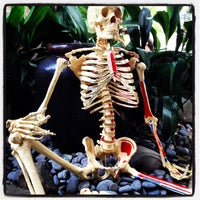 Photo taken at Flintridge Family Chiropractic by Rion Z. on 4/1/2013