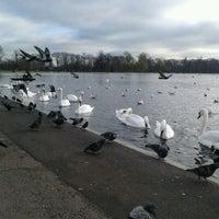 Foto tirada no(a) Kensington Gardens por shota r. em 11/29/2012