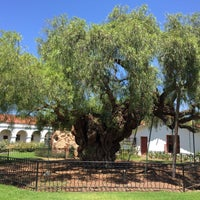Photo taken at The Oldest Pepper Tree in California by Ziad A. on 7/14/2016