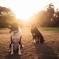 Photo taken at Balboa Park Dog Park by Ryan R. on 8/9/2013
