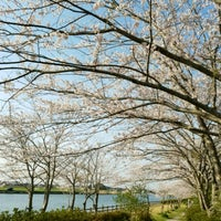 Photo taken at 桜道児童公園 by 🎉 on 4/14/2017