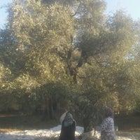 Photo taken at Kireli Ovası by TC Ayhan E. on 1/22/2017