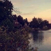 Photo taken at Swan Lake by Ajwad A. on 10/28/2016