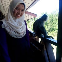 Photo taken at Labuk Bay Proboscis Monkey Sanctuary by dayang syaherra e. on 4/23/2014