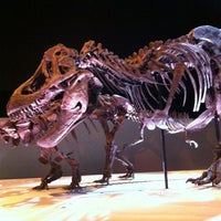 Foto tomada en Houston Museum of Natural Science  por Karin H. el 11/15/2012