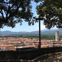 Photo taken at Torre Guinigi by Enrico Pietro Angelo on 6/6/2013