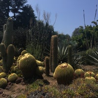 Photo taken at Desert Gardens by Mystery M. on 8/19/2018
