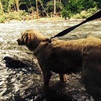 Photo taken at Patapsco State Park - River Road by Dan B. on 7/17/2014