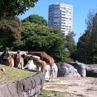 Photo taken at Zoológico de Chapultepec by Ro on 10/7/2012