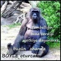 Photo taken at Gülsan Sanayi ÇETİNKAYA MOBİLYA by Tülay D. on 10/21/2014