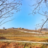 Photo taken at Terre Da Vino by Carlo V. on 2/20/2015