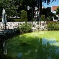6/12/2014 tarihinde Levent Ç.ziyaretçi tarafından Atatürkçü Düşünce Derneği Parkı'de çekilen fotoğraf