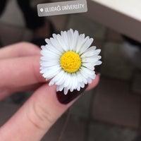 4/11/2018 tarihinde Rabia A.ziyaretçi tarafından Ağaoğlu Kafe'de çekilen fotoğraf