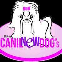 Photo taken at Canil New Dog's by Angelica A. on 5/10/2014