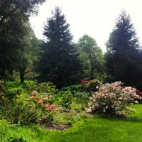 Photo taken at John McLaren Memorial Rhododendron Dell by Joanna C. on 4/3/2013