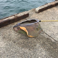 Photo taken at 乙浜漁港 by 🍀Nobuhiro M. on 6/18/2017