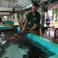 8/31/2015에 Tracy L.님이 Ogunquit Lobster Pound Restaurant에서 찍은 사진